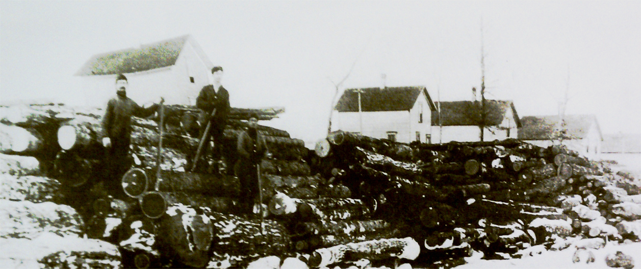 Logging along the South Shore of Herring Lake, 1907